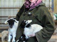 این خانم چوپان با 1000 گوسفند زندگی می کند