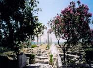 عکس های طبیعت زیبا و مکان های دیدنی کشور لبنان