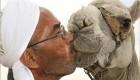 اقدام عجیب عرب ها برای بوسیدن شترها (عکس)