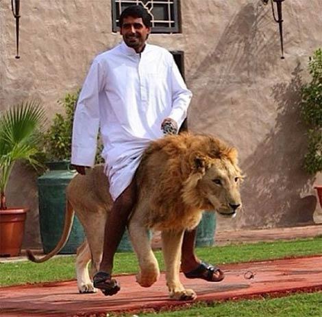 خوشگذرانی عرب های پولدار (عکس)