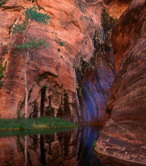 عکسهای بی نظیر از طبیعت شگفت انگیز