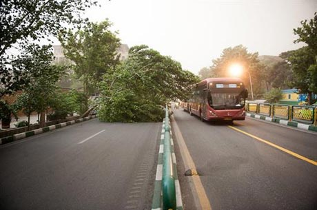 گزارش تصویری از طوفان خطرناک دیروز در تهران