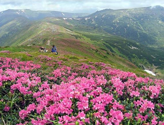 ع های شگفت انگیز و دیدنی از طبیعت زیبای اوکراین