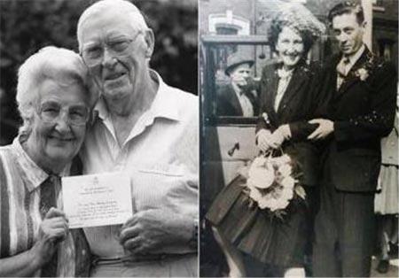 عشق قابل تحسین و جدانشدنی زوج وفادار + عکس