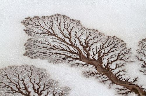 شگفت انگیزترین عکس های نشنال جئوگرافی در سال 2014