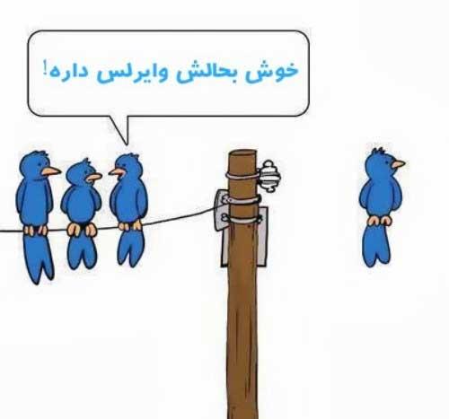 عکس های خنده دار از سوژه های جهانی»طنز و سرگرمی