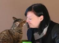 افتتاح نخستین کافه گربه ها در جهان + عکس