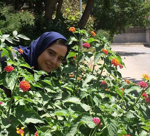 عکس های جدید مهراوه شریفی نیا