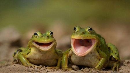 عکس نوشته های طنز جدید و خنده دار