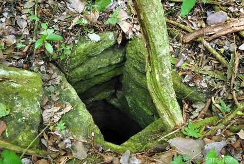 خبر جنجالی پیدا شدن دو شهر قدیمی 3 هزار ساله در دل جنگل