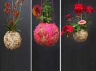 5 ایده جالب برای طراحی گل و گیاه منزلتان