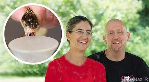 زن و شوهری که به طرز وحشتناکی زهر مار سمی را می گیرند