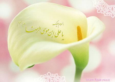کارت پستال های زیبا به مناسبت ولادت امام رضا