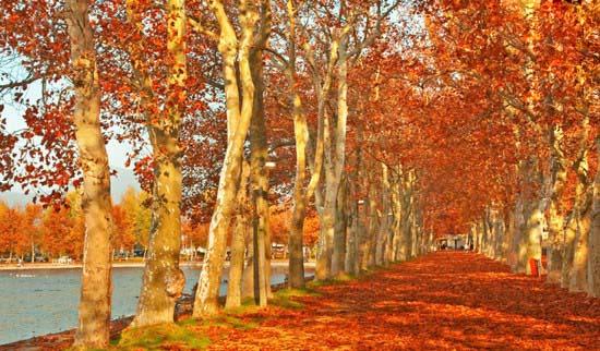 رونمایی جاذبه های گردشگری زیبای جهان در فصل پاییز + عکس