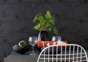 نمونه هایی از طراحی دکوراسیون منزل با رنگ سیاه