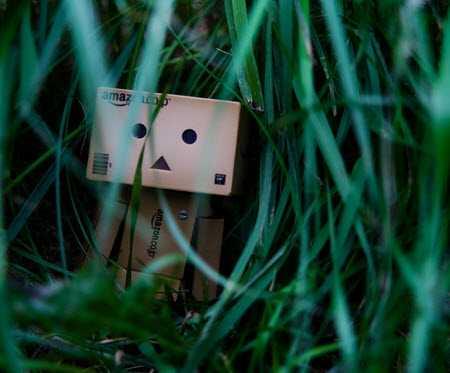 سری جدید و دیدنی عکس های عاشقانه از عروسک دانبو
