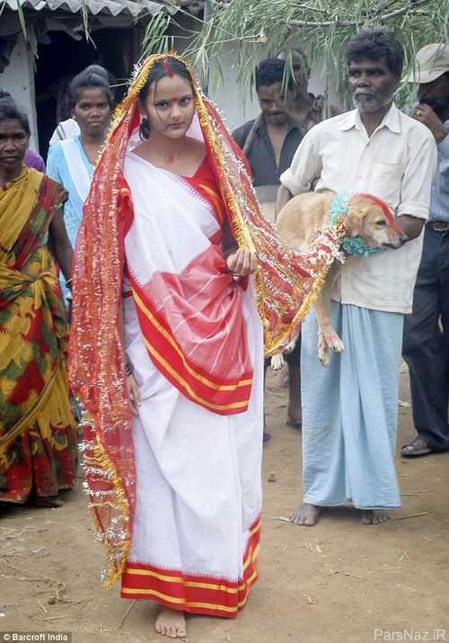 ازدواج جنجالی دختر هندی 18 ساله با سگ ولگرد + عکس