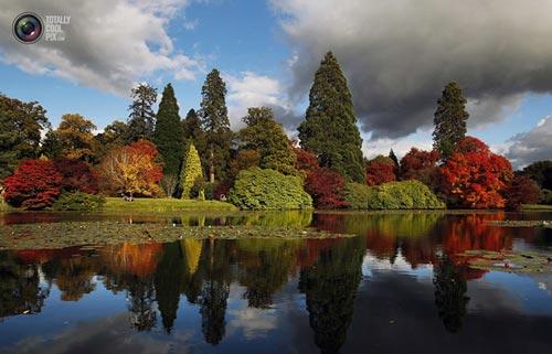 عکس های دل انگیز از طبیعت زیبای پاییزی