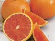 طرز تهیه مربای پرتقال درسته