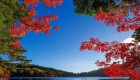 عکس های زیبا و دلنشین از طبیعت چشم نواز