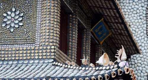عکس های دیدنی از تزئین دیوارهای خانه با هزاران صدف