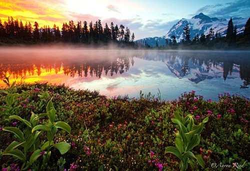 عکس های دیدنی از آینه ای زیبا از طبیعت