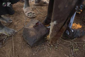 عکس هایی از سنت ختنه دختران در کنیا