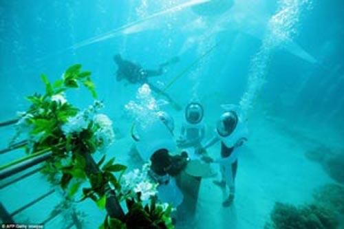 مراسم عروسی در اعماق دریا