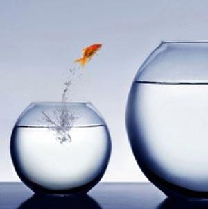 10 قدم مناسب برای رسیدن به موفقیتی بزرگ در زندگی