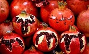 اس ام اس های جدید مخصوص شب یلدا سال ۹۳