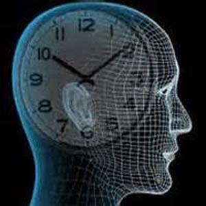ساعت بیولوژیک بدن چطور کار می کند؟