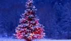 افسانه های نحوه پیدایش درخت کریسمس