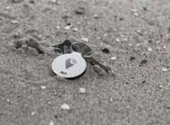 ردیابی با دقت بسیار بالا برای یافتن اشیاء گم شده +عکس