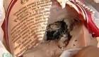 موش مرده در داخل سوسیس!! +عکس