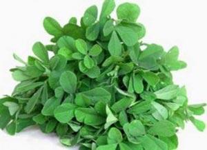 گیاهان دارویی مناسب برای درمان سرفه