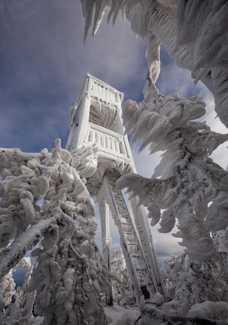 مجسمه های باورنکردنی یخ زده +عکس