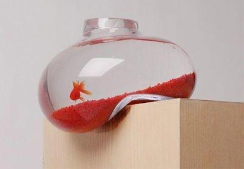 ایده های جالب طراحی تنگ ماهی +عکس