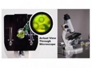 کوچکترین میکروسکوپ جهان توسط فرانسوی ها اختراع شد