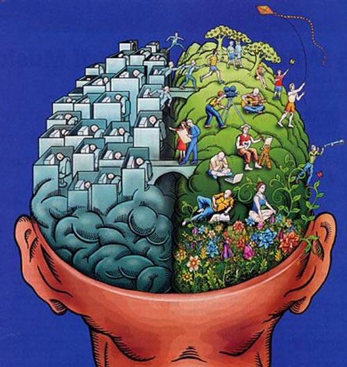 کدام نیمکره مغز شما فعال تر است؟