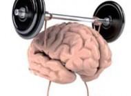 کار های مناسب برای هوشیاری مغز انسان