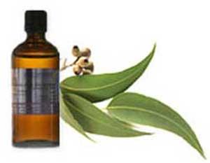 مواد ضدعفونی کننده طبیعی