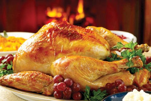 بوقلمون بهتر است یا مرغ ؟