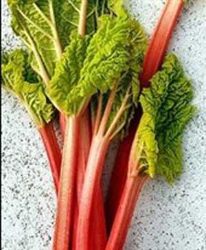 دانستنیهای گیاهان دارویی شفابخش بهاری