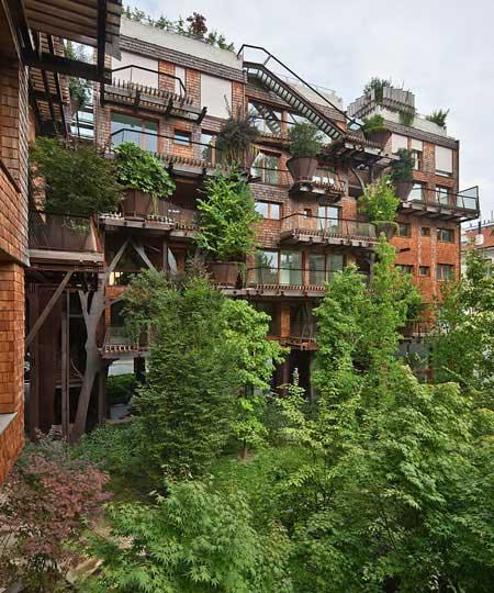 منزلی که از ۱۵۰ درخت ساخته شد!