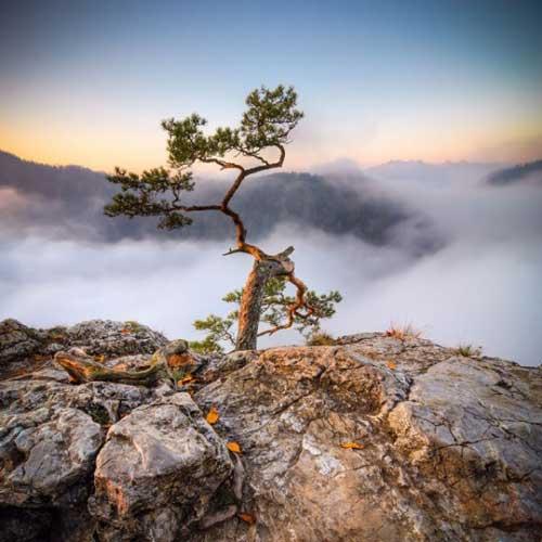 عکس های جالب کوههای تاترا