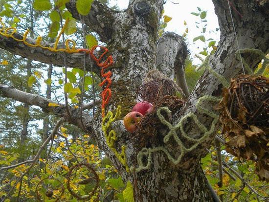 تصاویر مسابقه آرایش طبیعت در مونت سن هیلاری کانادا