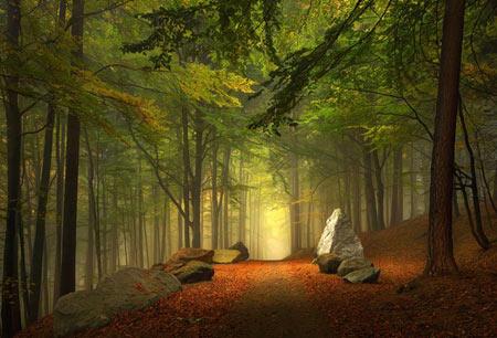17 جاده رویایی جهان که میشود در آن قدم زد