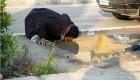 تصاویر دردناک از گوشه کنار ایران