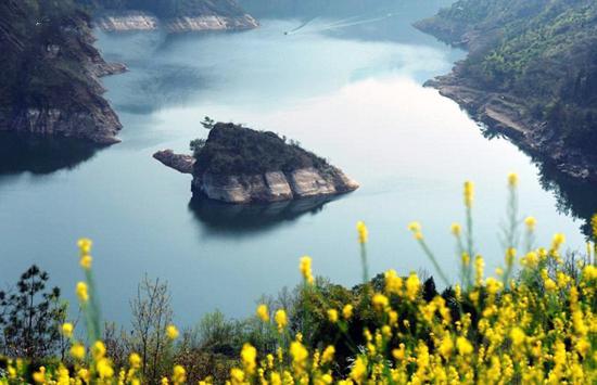 آشنایی با جزیره لاک پشتی که فقط در بهار ظاهر میشود