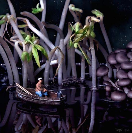 تصاویر جالب از میوه آرایی مینیاتوری